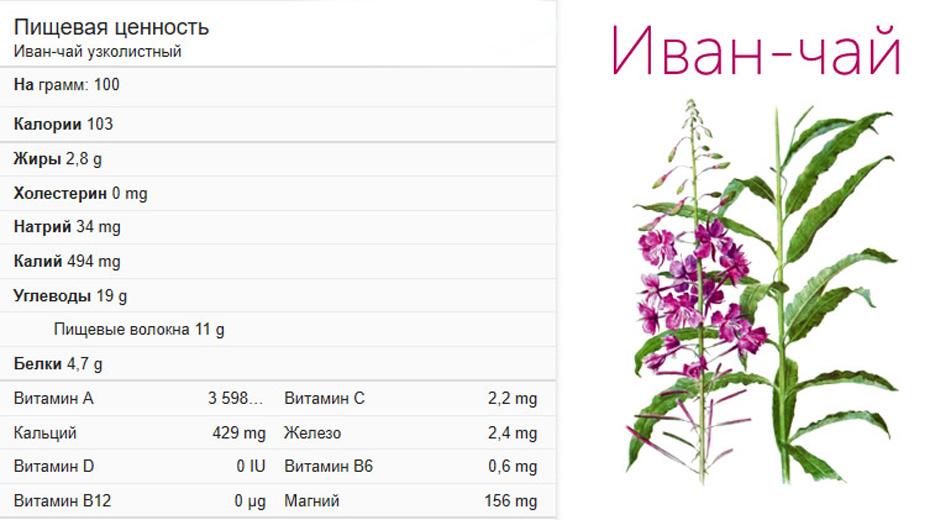 Полезнейший состав иван-чая позволяет рекомендовать его для женщин