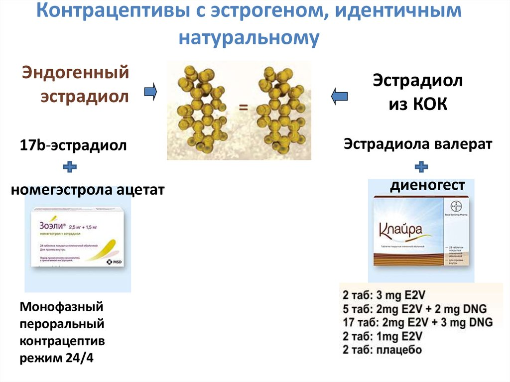 Эстроген - важный гормон в женском организме