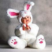 Как встречать год Белого Кролика
