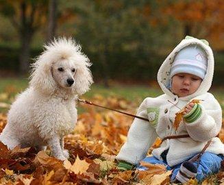 одежда для ребенка по погоде