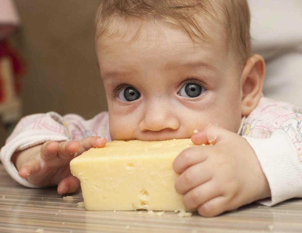 с какого возраста можно давать ребенку сыр правила прикорма